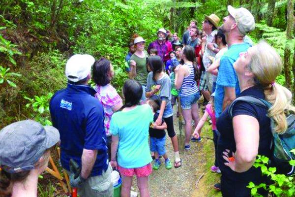 Bayview educational bush walk