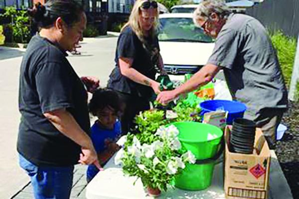 planting-vegeatbles-flowers