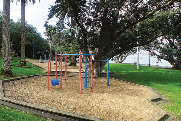 Hinemoa Park 2021