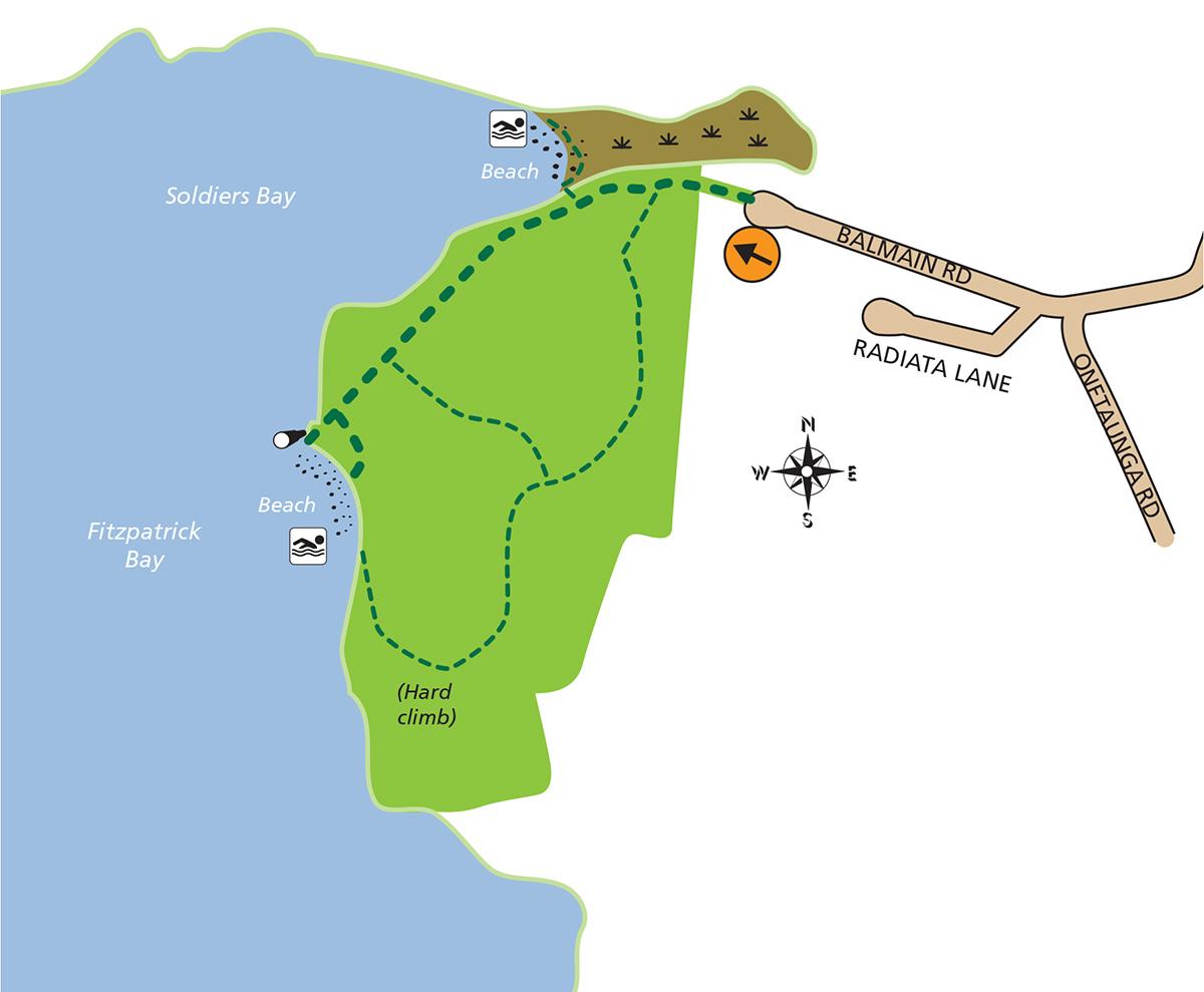Kauri point domain_map-2021